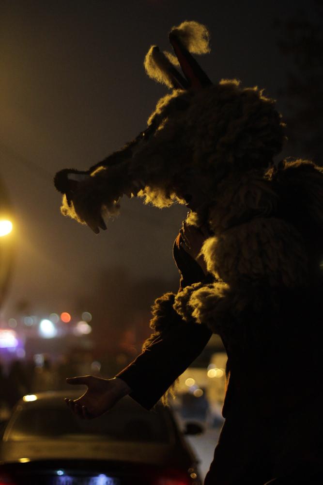 vampir vs werwolf